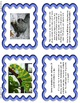 Math Word Problem Task Cards - Zoo Animals