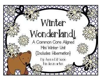 A Common Core Aligned Winter Mini Unit {Snowmen, Snow Gear, Hibernation}