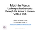 Math in Focus Odds and Ends