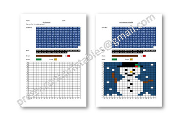 Maths Hidden Picture Co-ordinates Activity Christmas Snowman