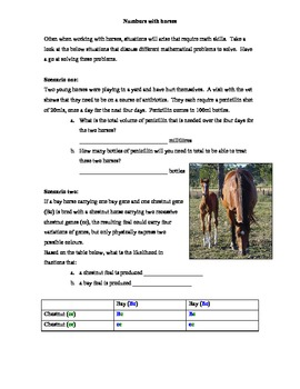 Maths with Horses Activities