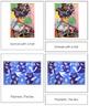 Matisse (Henri) 3-Part Art Cards