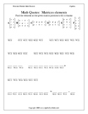 Matrices Introduction: Identifying Elements Worksheet