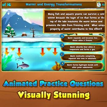 Matter & Energy Transformations - Quiz Game Warm-Up