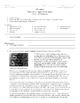 Matter Portfolio (15 worksheets + answers)