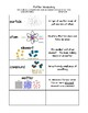 Matter Vocab Sort and Word Wall Cards