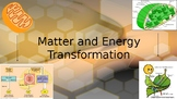 Matter and Energy Transformation