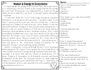 Matter and Energy in Ecosystems Informational & Nonfiction Text & Comprehension
