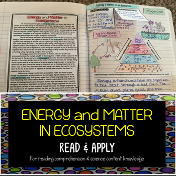 Matter and Energy in Ecosystems Reading Comprehension Inte