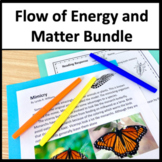 Matter and Energy in Organisms and Ecosystems LS1 Strand Bundle