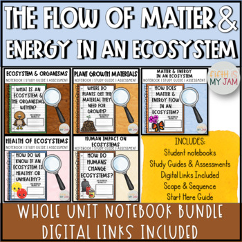 Matter and Energy in Organisms and Ecosystems // Lesson Bundle