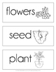 May Picture Word Cards {May Vocabulary}