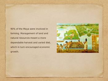 Maya Agriculture