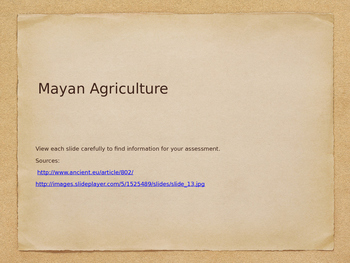 Maya Agriculture