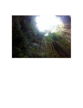 Maya History: Cenote Lesson