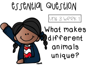 McGraw Hill 3rd grade Unit 3 essential questions
