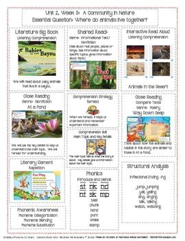 McGraw Hill First Grade Mini Focus Walls Unit 2 Weeks 1-3