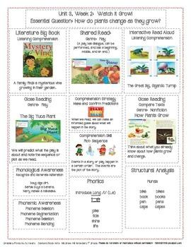 McGraw Hill First Grade Mini Focus Walls Unit 3 Weeks 1-3