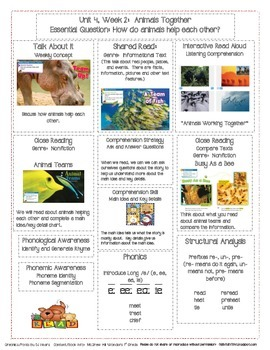 McGraw Hill First Grade Mini Focus Walls Unit 4 Weeks 1-3