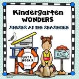 McGraw-Hill Kindergarten Wonders Senses at the Seashore Un