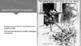 McGraw Hill United States History Chapter 6 The Progressiv