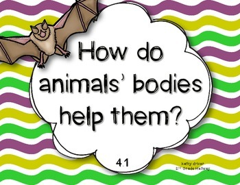 McGraw Hill Wonders 1st Grade How Bat Got Its Wings 4.1 {10 Literacy Activities}
