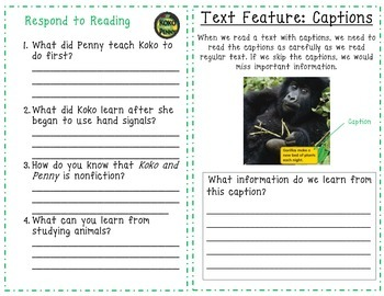 McGraw Hill Wonders 1st Grade Interactive Journal Unit 4-Week 5