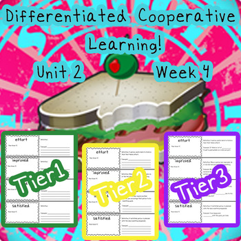 McGraw-Hill Wonders Differentiated Vocabulary Cards Unit 2 Week 4