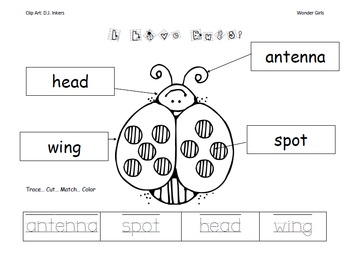 Kindergarten: Unit 2 Week 3- PowerPoint/Activities