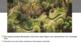 McGraw Hill World History Chapter 14 Pre-Columbian America