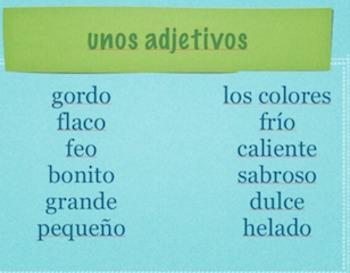 ¡Me gusta el león! -Mastering indirect verbs