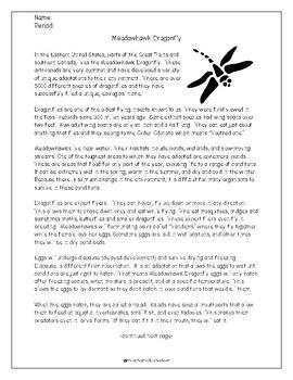 Meadowhawk Dragonfly:  Non Fiction Reading Activity