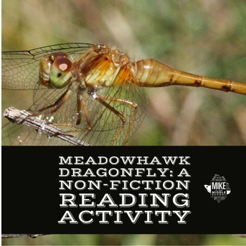 Meadowhawk Dragonfly:  Non Fiction Reading Activity