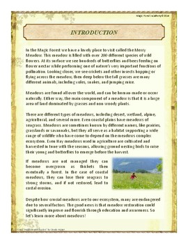 Meadow Themed Nature Education Unit-Stage 2 (Magic Forest Academy)
