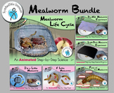 Mealworm Bundle - Animated Step-by-Steps® - SymbolStix