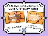 Mealworm (Darkling Beetle) Life Cycle Wheel Craftivity {BILINGUAL - CUTE!}