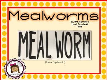 Mealworm Flip Book