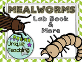 Mealworm Activity Pack