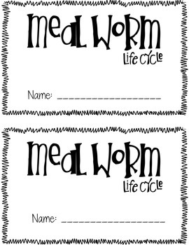 Once Upon A Mealworm {FOSS Mealworm Life Cycle Book}