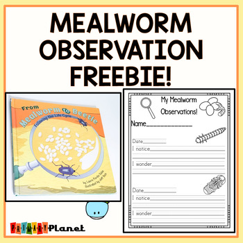 Mealworm Life Cycle Observation Freebie!