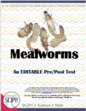 EDITABLE Mealworm (Life Cycle) Science Test for Grades 4-8
