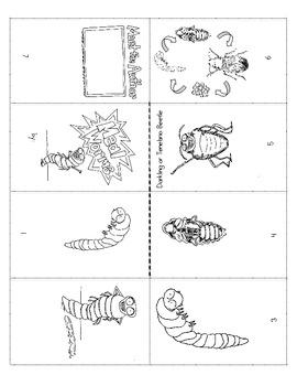 Mealworm Mini-book no text