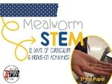 Mealworm STEM unit