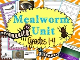 Mealworm Thematic Unit Bundle
