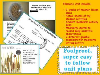 Mealworm Thematic Unit Bundle