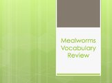 Mealworms Vocabulary Review