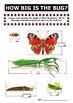 Measure bugs