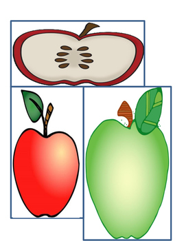 Measure the Apple-length and width measuring in Kindergarten