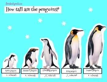 Measure the Penguins