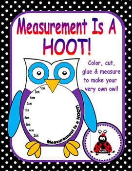 Measurement Owl